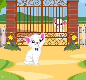 Jeu petit chat s echappe du jardin - Solution pour eloigner les chats du jardin ...
