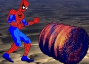 Jeu Spiderman Bloody Rage