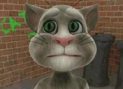 Jeu Talking Tom Cat